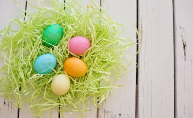 Easter eggs, holiday, celebrations, colorful eggs in nest