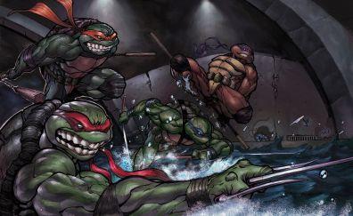 Teenage Mutant Ninja Turtles, Ninja