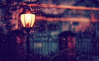 Street light, lamp, night, 4k