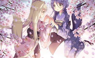 Blossom, anime girls, Konohana Kitan