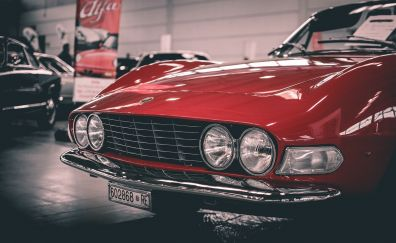 Fiat, red classic car, headlight, front view