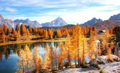 Dolomites, mountains, forest, lake, 4k
