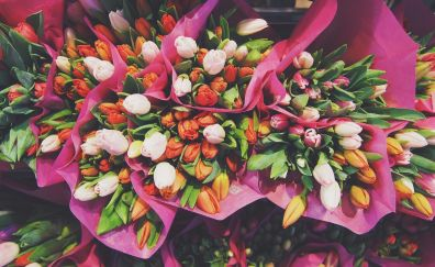 Tulips flowers bouquets