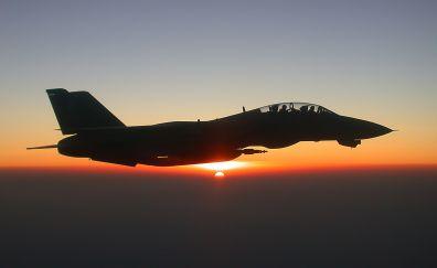 Grumman F-14 Tomcat, military aircraft