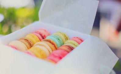 Dessert, colorful pastry, box