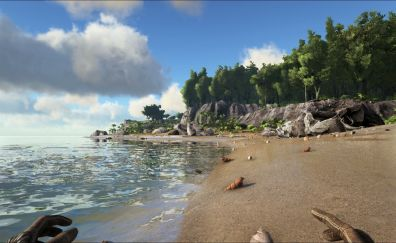 Beach sunset from ARK: survival evolved video game