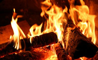 Fire close up view