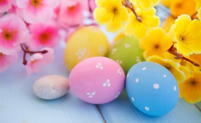 Easter eggs and spring blossoms