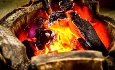Bonfire, wood fire