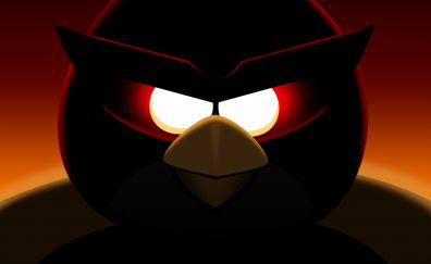Angry birds, red