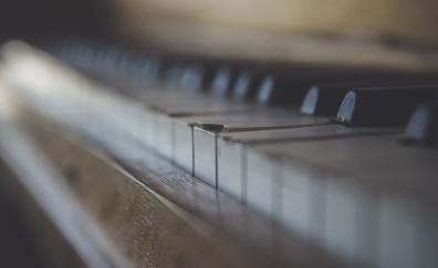 Broken key of piano