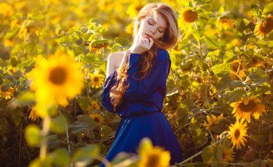 Sunflowers field, model, outdoor