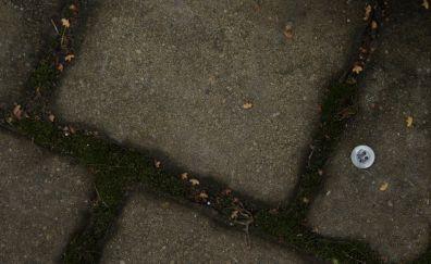 Stones lawn, button