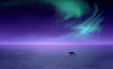 Polar bear, aurora, borealis, northern lights