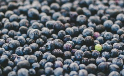 Cranberries fruits