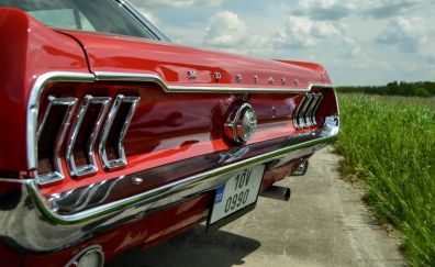 Ford mustang, classic car, rear view