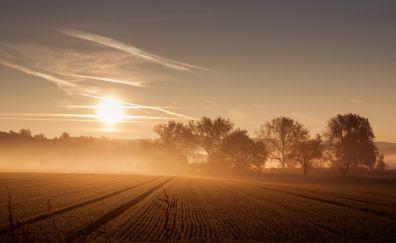 Mist in sunny day