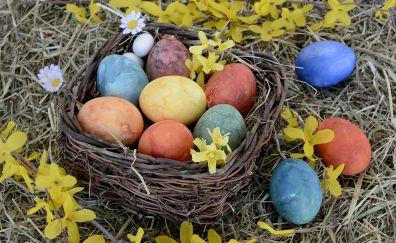 Easter nest, colored eggs, eggs