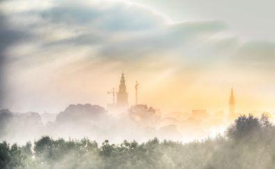 City, horizon, fog, mist, tree, sunrise, nature