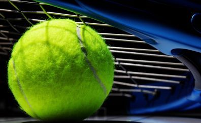 Tennis ball, Tennis, sports, close up