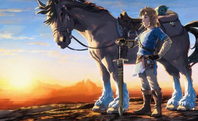 The Legend of Zelda: Breath of the Wild video game, horse