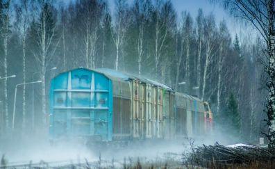 Train, winter, tree