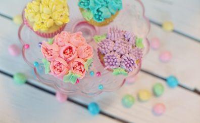 Cupcakes, pastries, colorful dessert