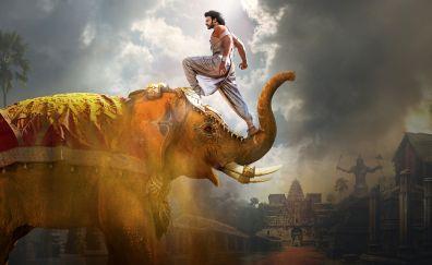 Baahubali 2: The Conclusion, 2017 Bollywood movie, elephant, 4k, 8k