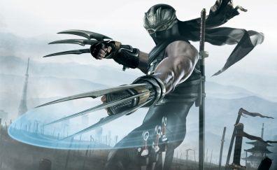 Ninja Gaiden II video game art