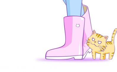 Toradora!, anime, cat