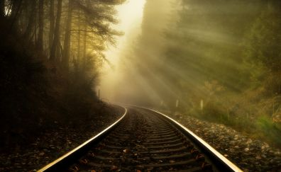 Rail road, sunlight, mist, fog