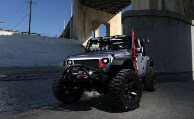 2016 Omix-ADA custom jeep wrangler car