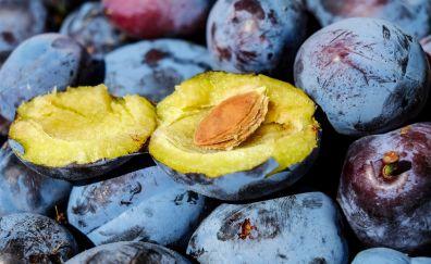 Plum fruits, close up