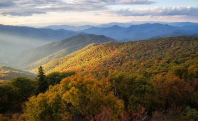 Blue Ridge Mountains, North Carolina, nature
