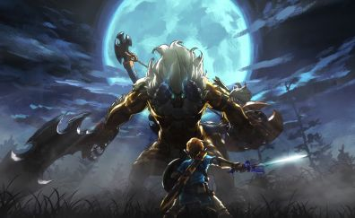 The Legend of Zelda: Breath of the Wild, video game, Link fight