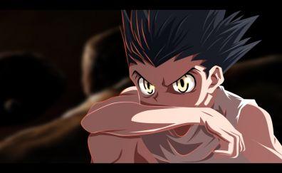 Gon freecss anime