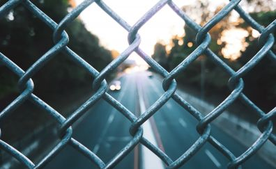 Wire fencing wall