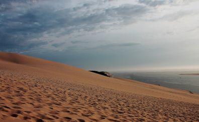 Desert dunes, sea, nature
