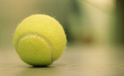 Tennis ball, close up, sports