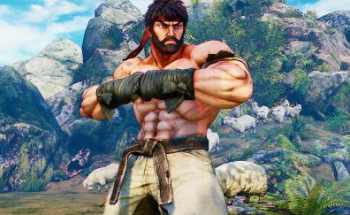 Street fighter V video game, fighter