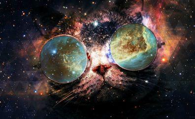 Space, Cat's drugs glasses