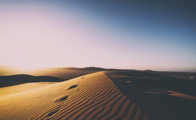 Sunset, desert, dunes, skyline, nature