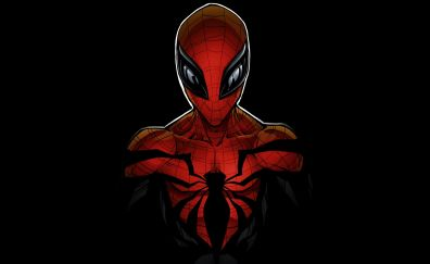 Spider man, comic book, superhero