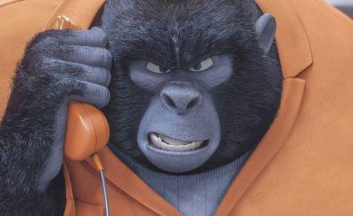 Gorilla of Sing animation movies