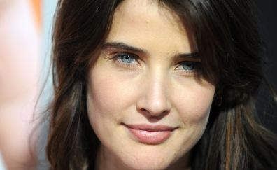 Lovely face of Cobie Smulders