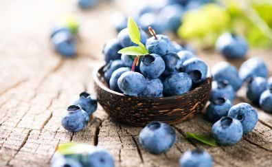 Blueberry, fruits, berry