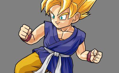 Goku of dragon ball