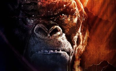 2017 movie, Kong: skull island, movie, kong, monkey, gorilla
