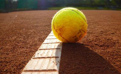 Tennis ball, sports, close up