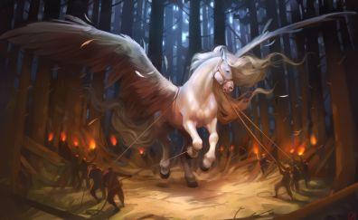 Pegasus horse fantasy